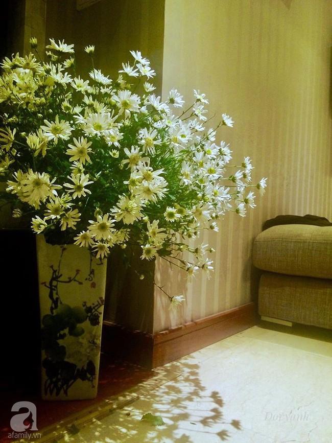 Làm đẹp nhà đón mùa đông Hà Nội với cúc họa mi đẹp dịu dàng, bình yên  - Ảnh 17.