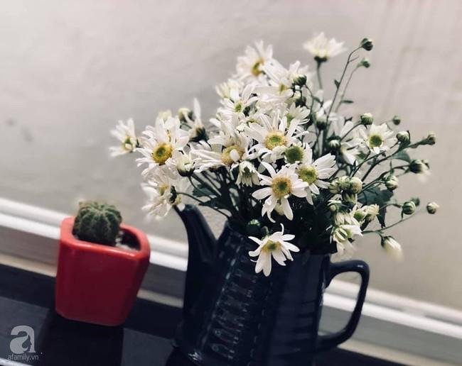 Làm đẹp nhà đón mùa đông Hà Nội với cúc họa mi đẹp dịu dàng, bình yên  - Ảnh 23.