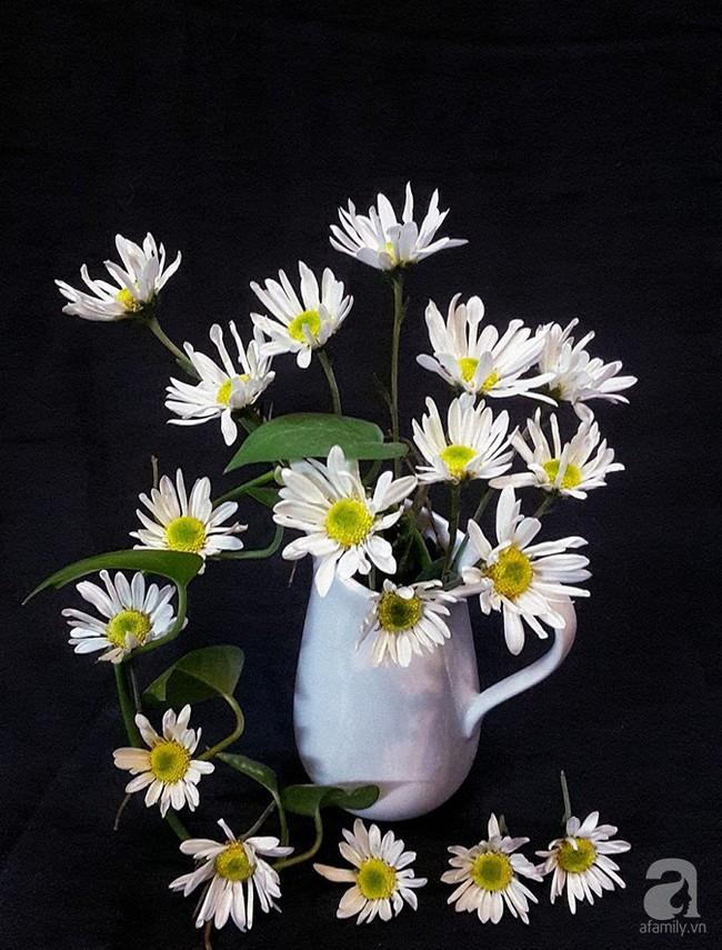 Làm đẹp nhà đón mùa đông Hà Nội với cúc họa mi đẹp dịu dàng, bình yên  - Ảnh 29.