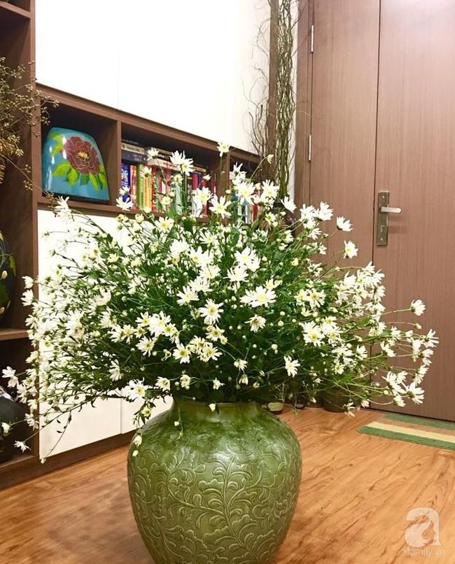 Làm đẹp nhà đón mùa đông Hà Nội với cúc họa mi đẹp dịu dàng, bình yên  - Ảnh 11.