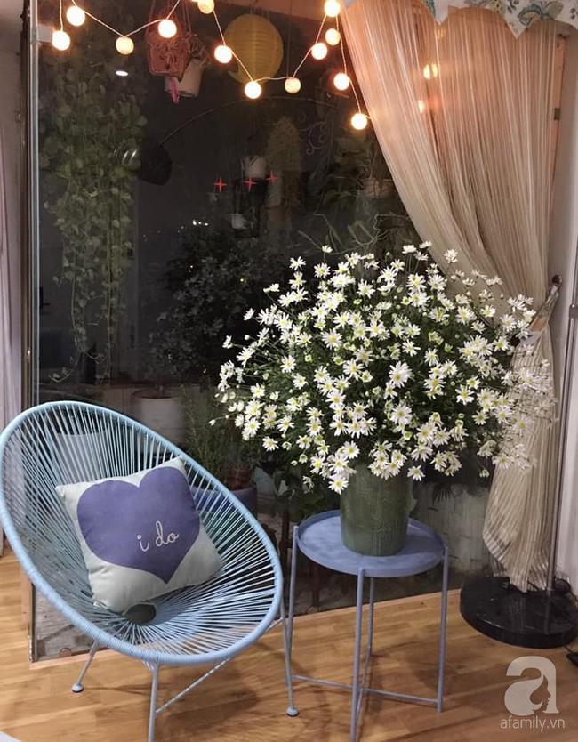 Làm đẹp nhà đón mùa đông Hà Nội với cúc họa mi đẹp dịu dàng, bình yên  - Ảnh 6.