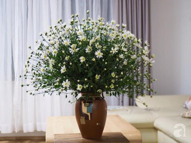 Làm đẹp nhà đón mùa đông Hà Nội với cúc họa mi đẹp dịu dàng, bình yên  - Ảnh 25.