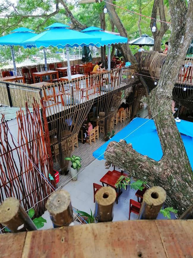 Chẳng cần sang Thái, ngay ở Cần Thơ cũng có quán cafe trên cây đẹp lung linh đang được check-in rầm rộ  - Ảnh 5.