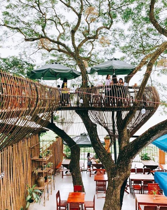 Chẳng cần sang Thái, ngay ở Cần Thơ cũng có quán cafe trên cây đẹp lung linh đang được check-in rầm rộ  - Ảnh 2.