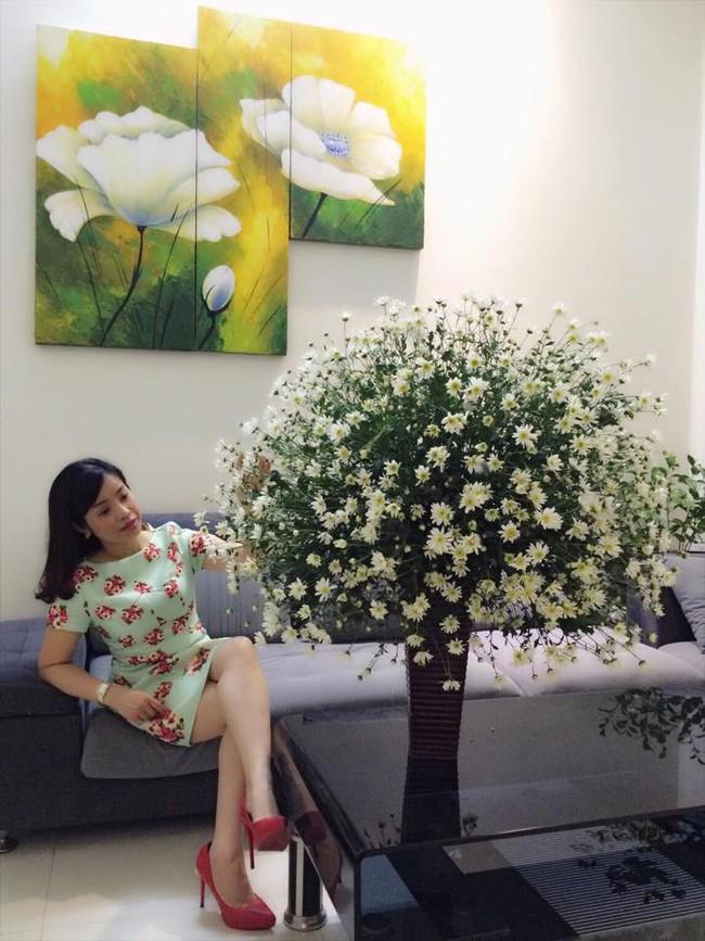 Làm đẹp nhà đón mùa đông Hà Nội với cúc họa mi đẹp dịu dàng, bình yên  - Ảnh 3.
