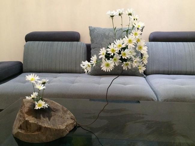 Làm đẹp nhà đón mùa đông Hà Nội với cúc họa mi đẹp dịu dàng, bình yên  - Ảnh 4.