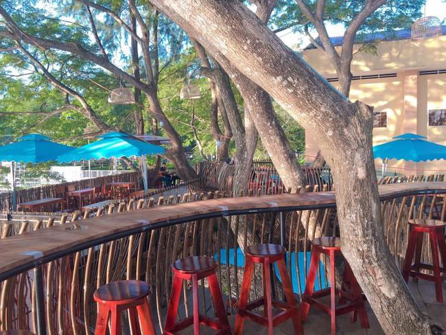 Chẳng cần sang Thái, ngay ở Cần Thơ cũng có quán cafe trên cây đẹp lung linh đang được check-in rầm rộ  - Ảnh 3.