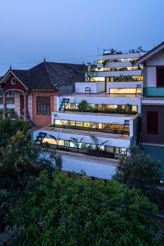Cận cảnh ngôi nhà có ruộng bậc thang ngay mặt tiền đạt nhiều giải thưởng kiến trúc lớn ở Hà Tĩnh - Ảnh 2.
