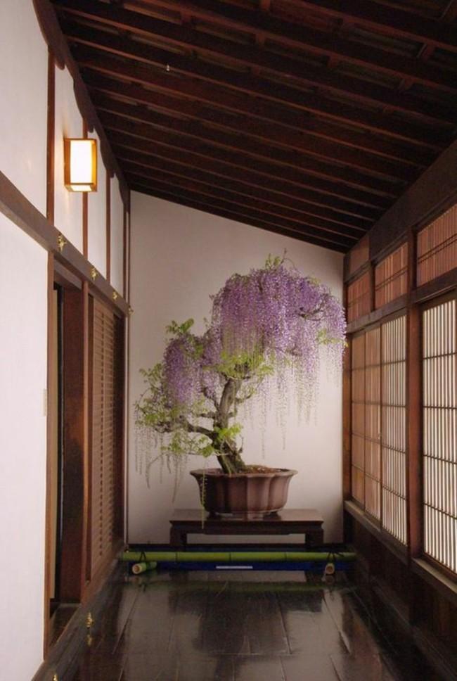 Nếu yêu con người và phong cách Nhật thì đây là các cách giúp bạn có một không gian sống đậm chất Nhật Bản - Ảnh 2.