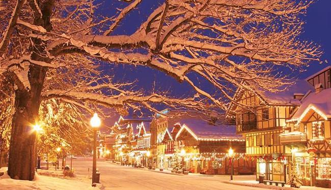 Ngắm những ngôi nhà đẹp như cổ tích lung linh trong mùa Giáng sinh - Ảnh 14.