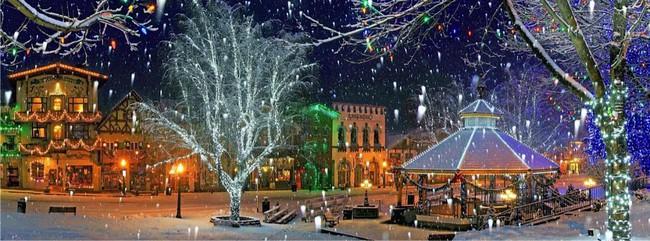 Ngắm những ngôi nhà đẹp như cổ tích lung linh trong mùa Giáng sinh - Ảnh 16.