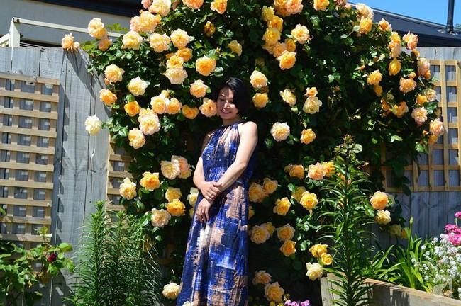 Khu vườn trăm hoa đua nở rực rỡ như chốn thiên đường của người phụ nữ Việt ở Úc - Ảnh 4.
