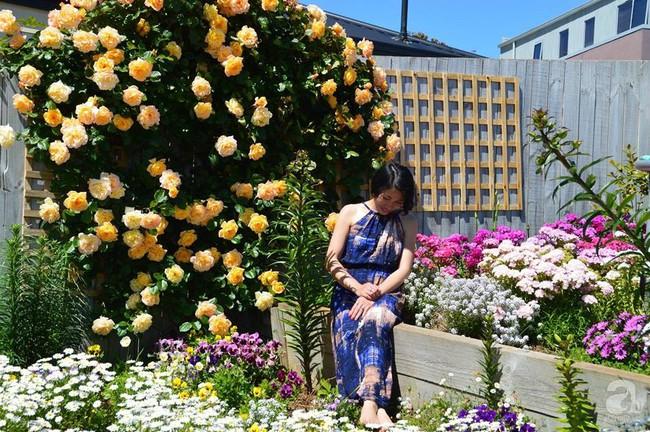 Khu vườn trăm hoa đua nở rực rỡ như chốn thiên đường của người phụ nữ Việt ở Úc - Ảnh 1.