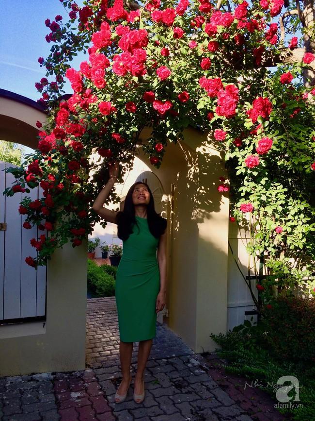 Ngôi nhà với khu vườn 600m² phủ kín các loại hoa đẹp như tranh vẽ của nữ giám đốc Việt ở Hungary - Ảnh 1.