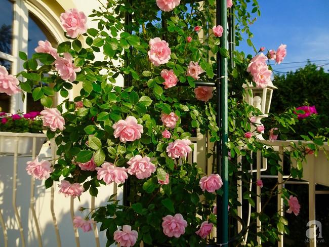 Ngôi nhà với khu vườn 600m² phủ kín các loại hoa đẹp như tranh vẽ của nữ giám đốc Việt ở Hungary - Ảnh 10.