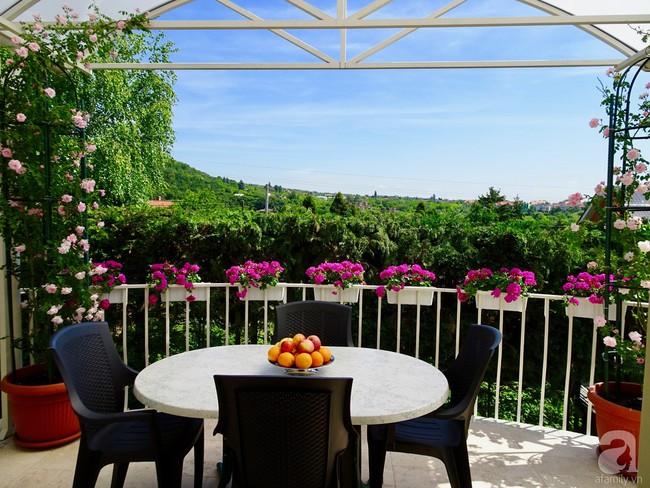 Ngôi nhà với khu vườn 600m² phủ kín các loại hoa đẹp như tranh vẽ của nữ giám đốc Việt ở Hungary - Ảnh 23.
