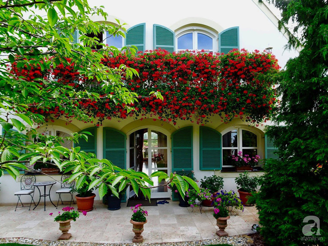 Ngôi nhà với khu vườn 600m² phủ kín các loại hoa đẹp như tranh vẽ của nữ giám đốc Việt ở Hungary - Ảnh 16.