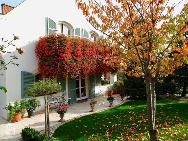 Ngôi nhà với khu vườn 600m² phủ kín các loại hoa đẹp như tranh vẽ của nữ giám đốc Việt ở Hungary - Ảnh 14.
