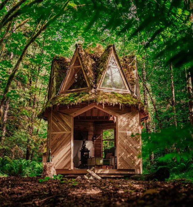 Ngôi nhà nhỏ xíu kiểu cabin xinh đẹp như trong truyện cổ tích nhờ thiết kế mái che đáng yêu - Ảnh 1.