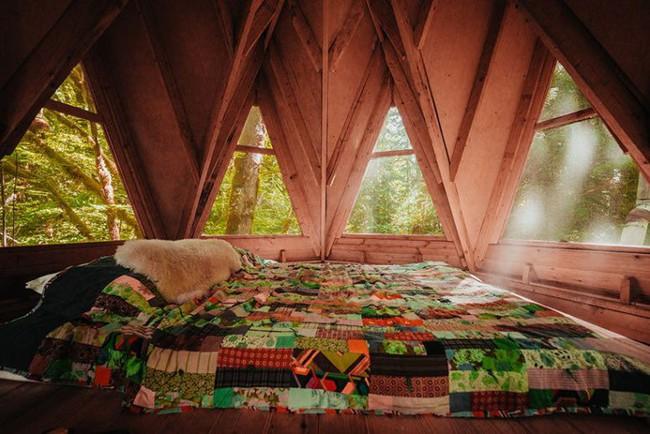 Ngôi nhà nhỏ xíu kiểu cabin xinh đẹp như trong truyện cổ tích nhờ thiết kế mái che đáng yêu - Ảnh 4.