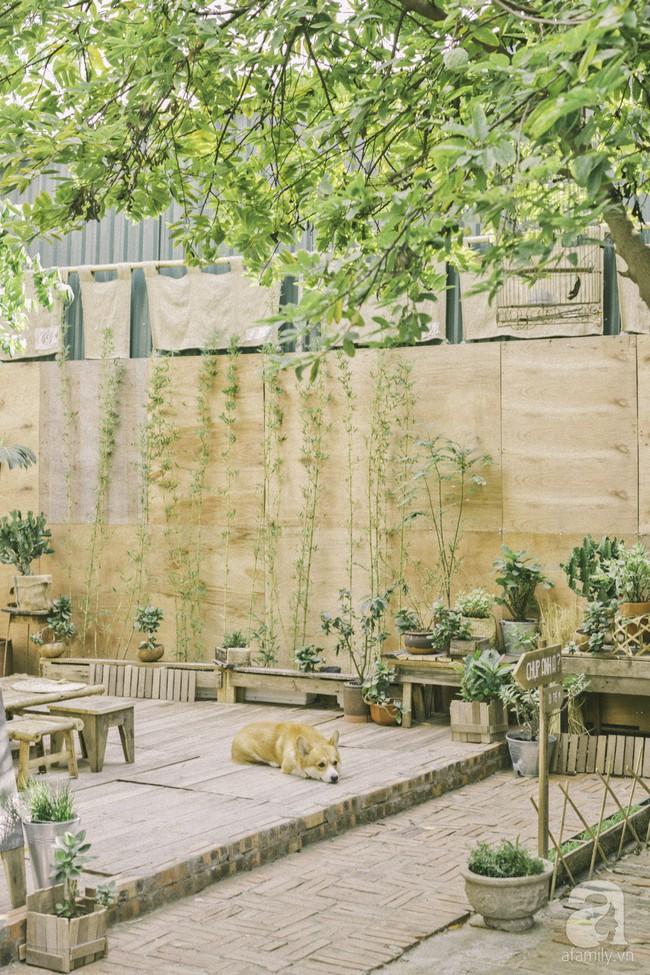 Chàng trai 8X đam mê nhiếp ảnh biến mảnh đất hoang thành khu vườn đậm màu Vintage rộng 20m² ở Hà Nội - Ảnh 18.
