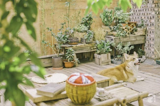 Chàng trai 8X đam mê nhiếp ảnh biến mảnh đất hoang thành khu vườn đậm màu Vintage rộng 20m² ở Hà Nội - Ảnh 16.