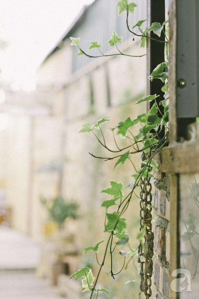 Chàng trai 8X đam mê nhiếp ảnh biến mảnh đất hoang thành khu vườn đậm màu Vintage rộng 20m² ở Hà Nội - Ảnh 11.