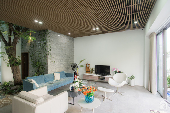 Nhà vườn đầy bóng nắng và cây xanh rộng 700m², được cải tạo lại từ 6 căn nhà liền kề của đôi vợ chồng trẻ giữa trung tâm xứ Thanh - Ảnh 6.