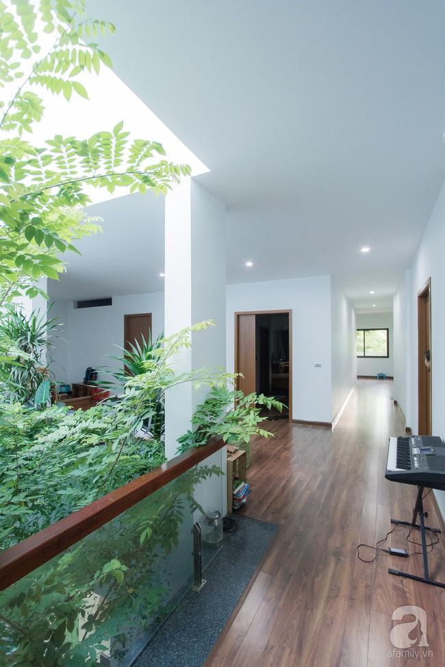 Nhà vườn đầy bóng nắng và cây xanh rộng 700m², được cải tạo lại từ 6 căn nhà liền kề của đôi vợ chồng trẻ giữa trung tâm xứ Thanh - Ảnh 18.