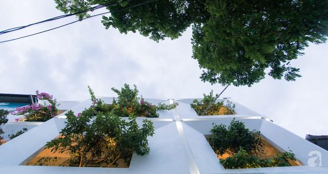 Nhà vườn đầy bóng nắng và cây xanh rộng 700m², được cải tạo lại từ 6 căn nhà liền kề của đôi vợ chồng trẻ giữa trung tâm xứ Thanh - Ảnh 19.