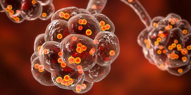 Vật dụng chứa nhiều vi khuẩn nhất của các bác sĩ nhưng khi khám bệnh thường bị bỏ qua - Ảnh 3.
