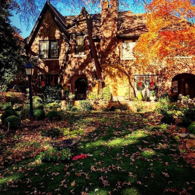 Vì tuổi thơ bất hạnh, người phụ nữ dành 20 năm để biến mơ ước tạo một khu vườn cổ tích trở thành hiện thực - Ảnh 5.