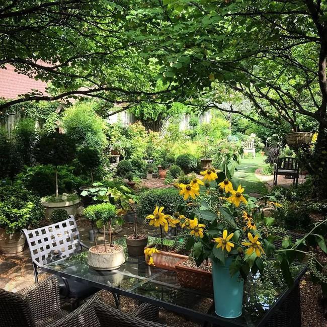 Vì tuổi thơ bất hạnh, người phụ nữ dành 20 năm để biến mơ ước tạo một khu vườn cổ tích trở thành hiện thực - Ảnh 9.