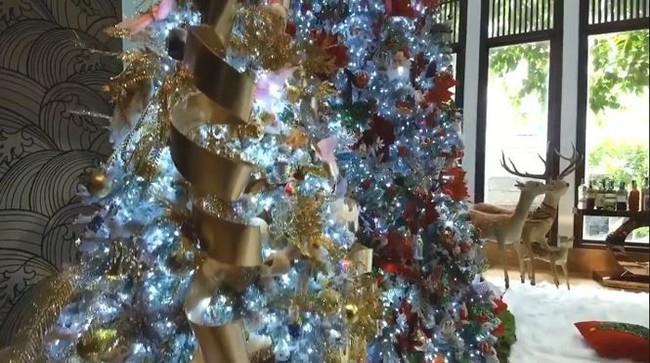 Biệt thự 60 tỷ của Đàm Vĩnh Hưng lung linh trong ngày Giáng sinh - Ảnh 13.