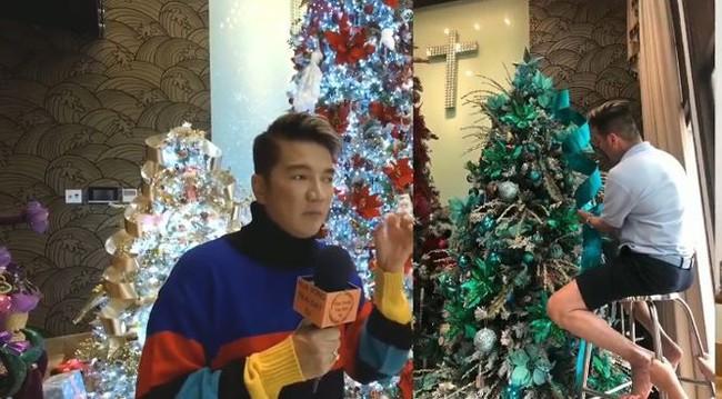 Biệt thự 60 tỷ của Đàm Vĩnh Hưng lung linh trong ngày Giáng sinh - Ảnh 4.