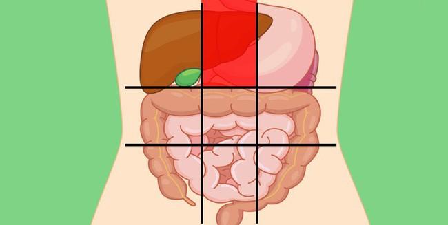 Nhờ bản đồ bụng này mà bạn sẽ biết các cơn đau ở mỗi vị trí trên bụng là do nguyên nhân nào gây ra - Ảnh 2.