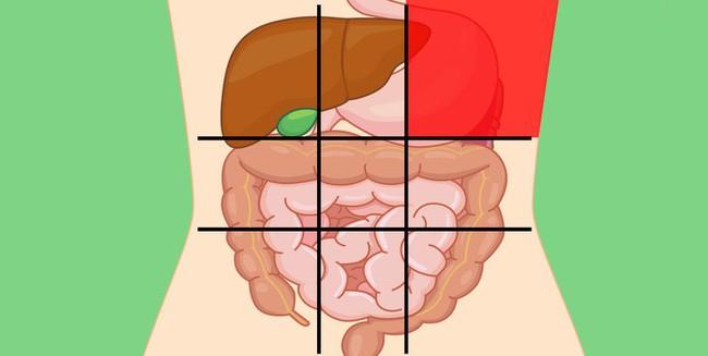 Nhờ bản đồ bụng này mà bạn sẽ biết các cơn đau ở mỗi vị trí trên bụng là do nguyên nhân nào gây ra - Ảnh 3.