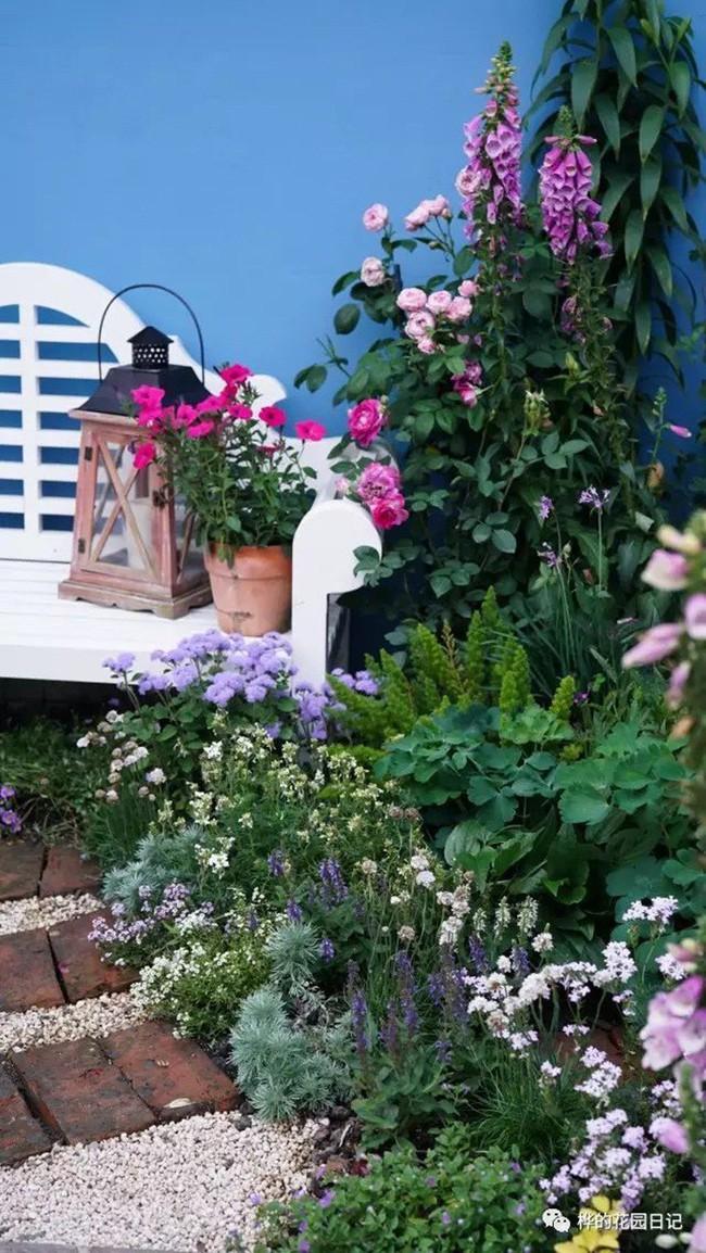 Khu vườn dịu dàng nét xuân, trăm hoa đua nở trên sân thượng 88m² của bà mẹ hai con  - Ảnh 26.