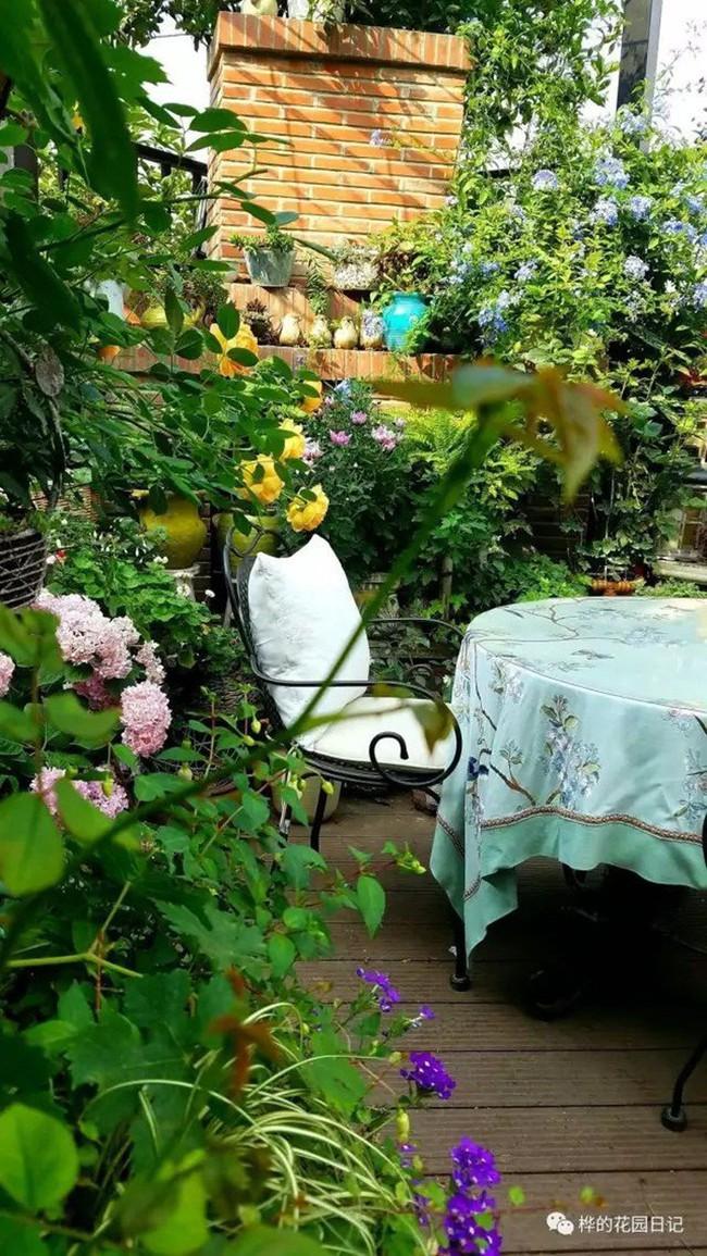 Khu vườn dịu dàng nét xuân, trăm hoa đua nở trên sân thượng 88m² của bà mẹ hai con  - Ảnh 15.