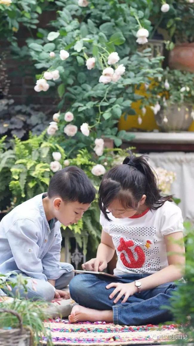 Khu vườn dịu dàng nét xuân, trăm hoa đua nở trên sân thượng 88m² của bà mẹ hai con  - Ảnh 14.