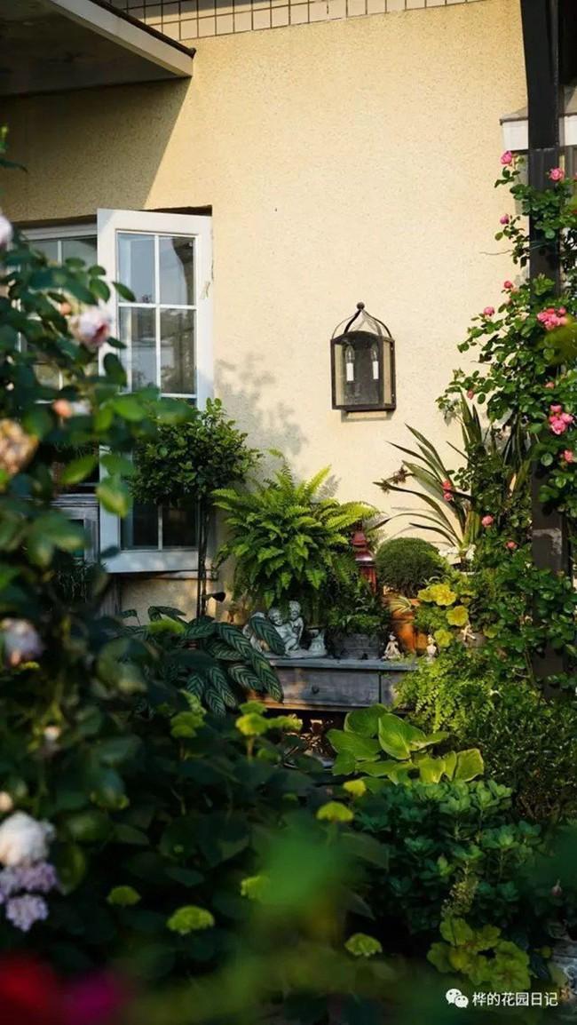 Khu vườn dịu dàng nét xuân, trăm hoa đua nở trên sân thượng 88m² của bà mẹ hai con  - Ảnh 11.