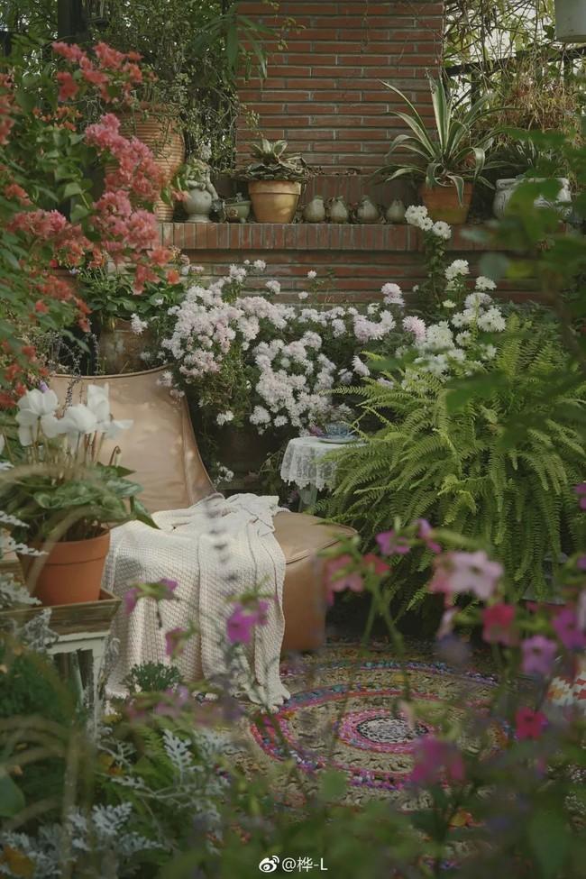 Khu vườn dịu dàng nét xuân, trăm hoa đua nở trên sân thượng 88m² của bà mẹ hai con  - Ảnh 9.
