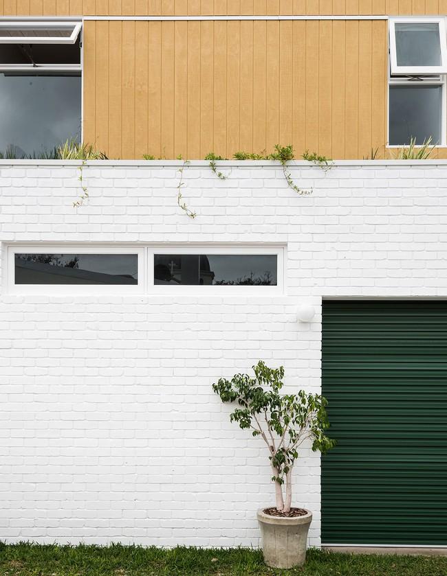 Ngôi nhà xanh vô cùng thân thiện với môi trường, được cặp đôi tự tay thiết kế bằng vật liệu tái chế  - Ảnh 2.