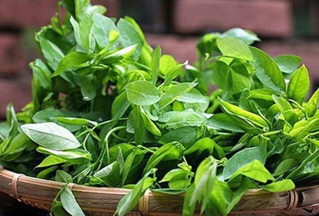 Lương y mách 3 loại hạt, 2 loại rau rẻ tiền giúp tăng cường sinh lý chả kém gì Viagra - Ảnh 1.
