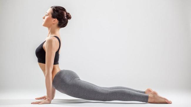 5 tư thế yoga cơ bản giúp cải thiện sức khỏe - Ảnh 3.
