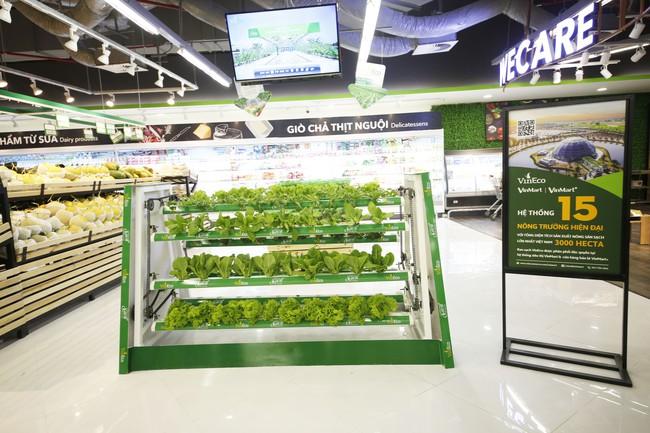 9 loại rau củ quả mà các chuyên gia dinh dưỡng hay ăn hàng ngày, hóa ra loại rau củ nào cũng rất quen thuộc - Ảnh 10.