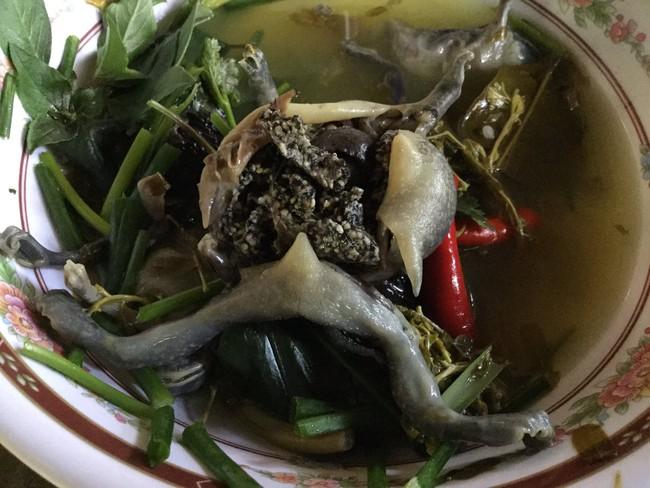 Ếch òn nguyên con - món ăn khiến nhiều người khiếp vía khi vừa nhìn thấy này lại là đặc sản ở Việt Nam và cả Thái Lan - Ảnh 7.