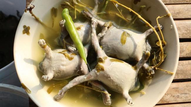 Ếch òn nguyên con - món ăn khiến nhiều người khiếp vía khi vừa nhìn thấy này lại là đặc sản ở Việt Nam và cả Thái Lan - Ảnh 8.
