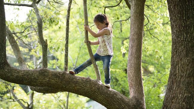 Mẹ Mỹ kể về môi trường sống chẳng khác gì chốn địa đàng mà người Đức nuôi dạy lên những đứa trẻ tự tin, tự lập - Ảnh 3.