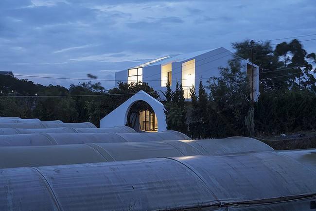 """Ngôi nhà 100m2 của anh chàng nhiếp ảnh gia tại Đà Lạt khiến """"vạn người mê"""" - Ảnh 3."""